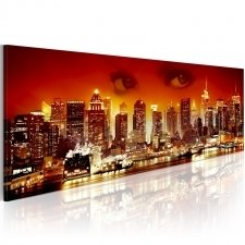 Canvas Print A look on New York