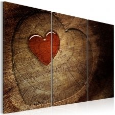 Canvas Print - Old love does not rust - 3 pieces