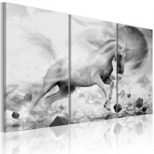 Canvas Print - A unicorn on the edge of the world