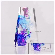 Acrylic Plexiglas Awards Bloc Hp