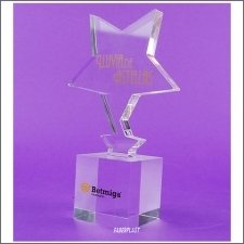 Trophy Methacrylate Betmiga